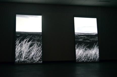 Unclaimed Field, 2018
